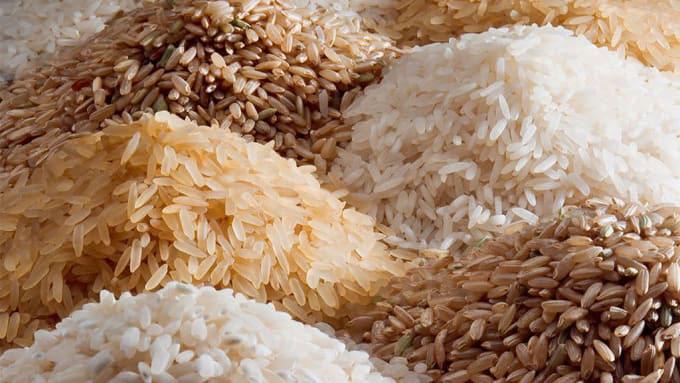 different_rice_